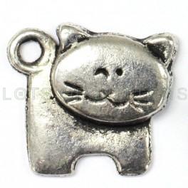 Cat Charm-1
